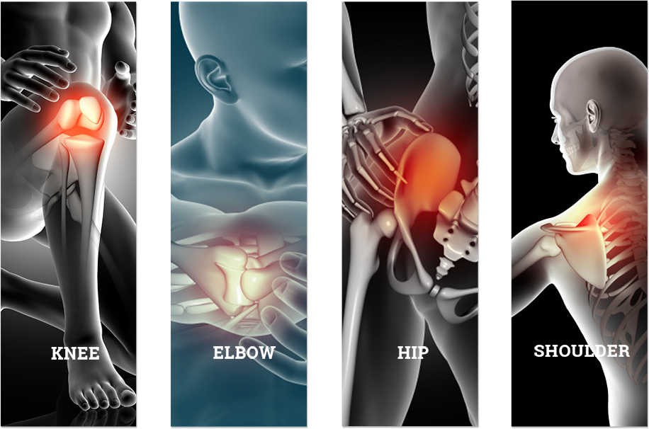 The specialities like Knee, Hip, Elbow and Shoulder.